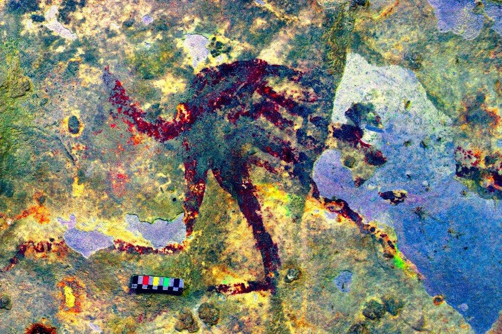 اولین نقاشی های بشر در سولاوسی جنوبی