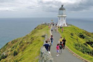 سفر به نیوزیلند - دیدنی های نیوزیلند