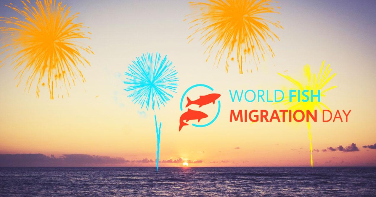گردشگری جهان - روز جهانی مهاجرت ماهیان - محیط زیست