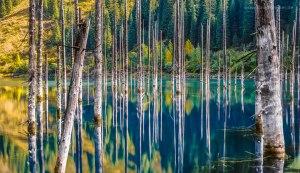 گردشگری جهان - گردشگری قزاقستان -  آلماتی - دریاچه کیندی - دریاچه کایندی - عجیب ترین دریاچه جهان - جوان ترین دریاچه جهان