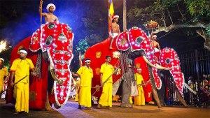 فستیوال-Esala Perahera-سریلانکا-گردشگری سریلانکا-آسیا-گردشگری-بهترین فستیوال