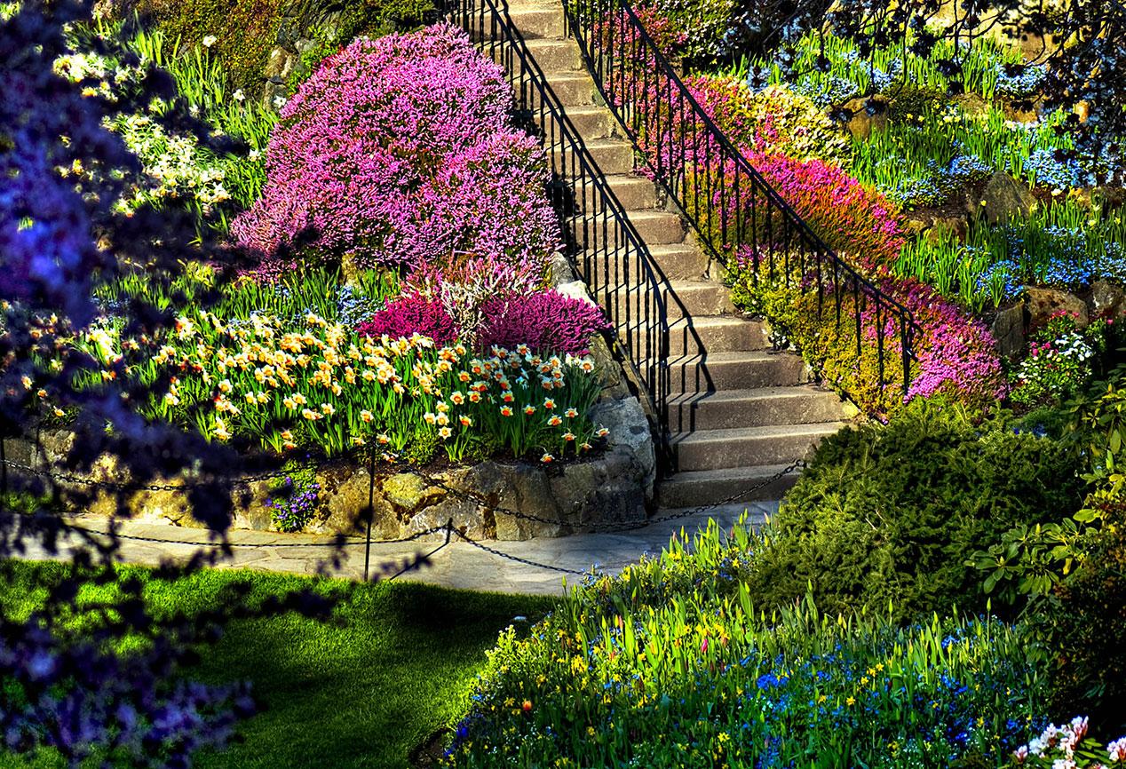 گردشگری دنیا - باغ های مخفی دنیا - باغ های شگفت انگیز