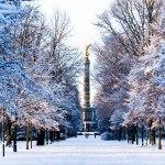 وین در زمستان