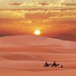 شگفتانگیزترین اتفاق در صحرای بزرگ آفریقا
