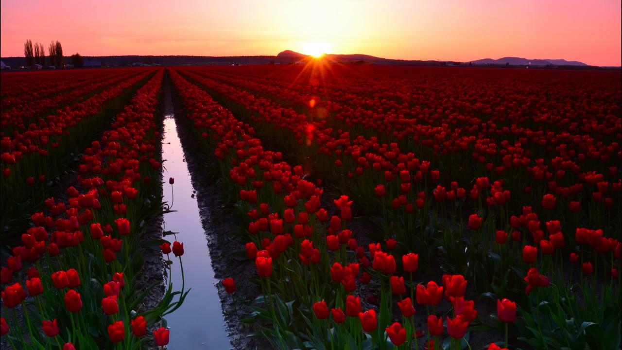 زیباترین مقاصد بهاری دنیا