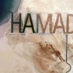 ساحل حَمَد؛ علامت میلیاردرها بر روی زمین