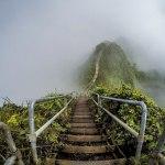 پلکانی به بهشت؛ مسیر ممنوعه هاوایی