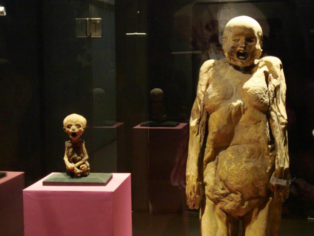 موزه مومیایی گواناخواتو