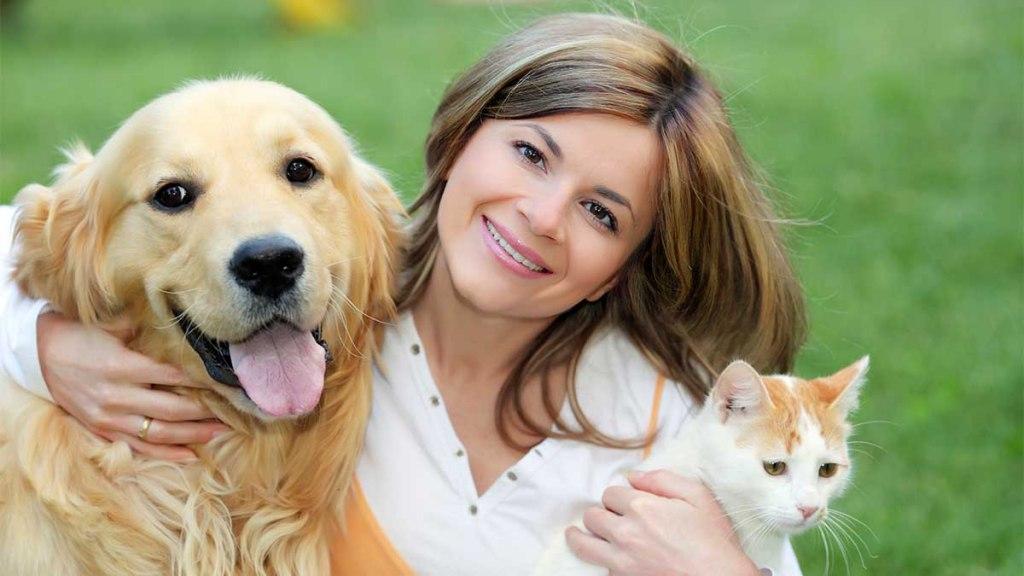 همدم برای حیوانات خانگی
