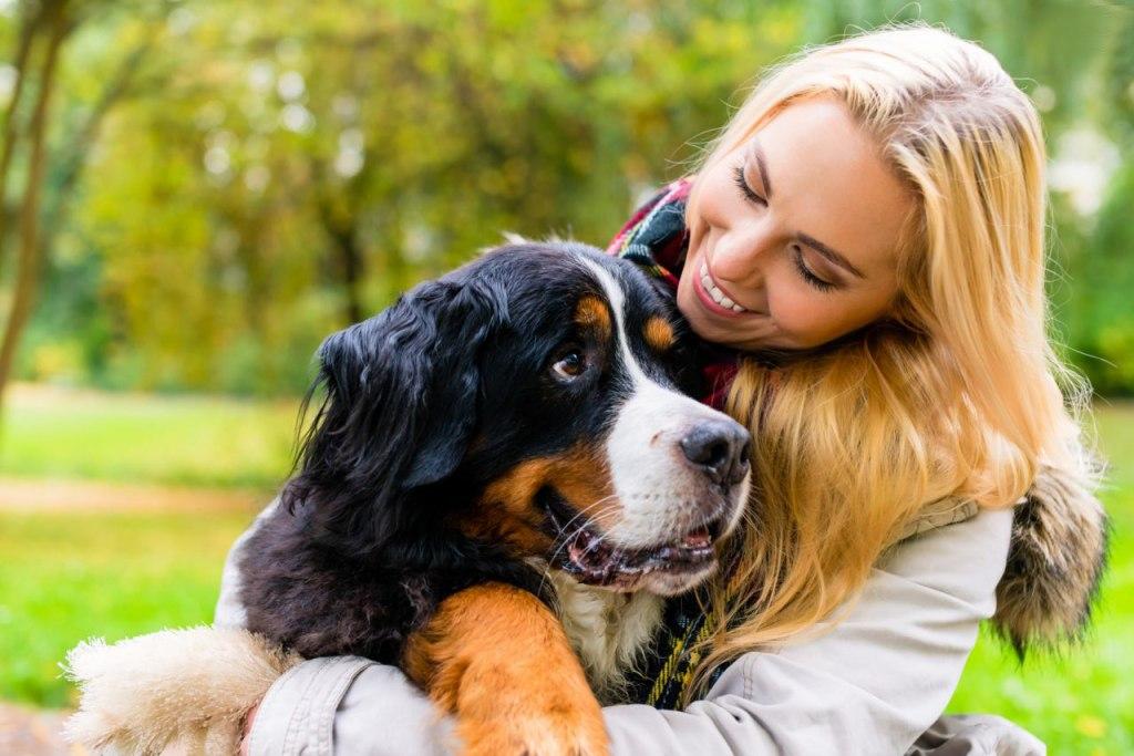 باید برای سگتان مالیات پرداخت کنید