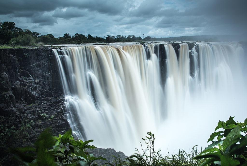 به قلب حیات وحش جهان، آفریقا سفر کنید!