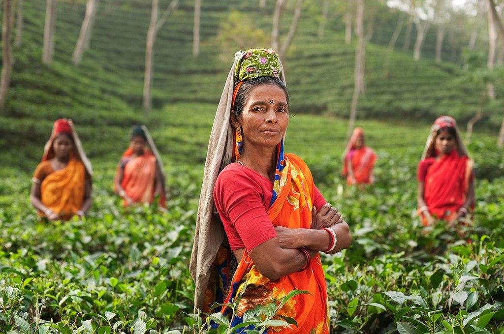 فرهنگ و زبان مردم بنگلادش
