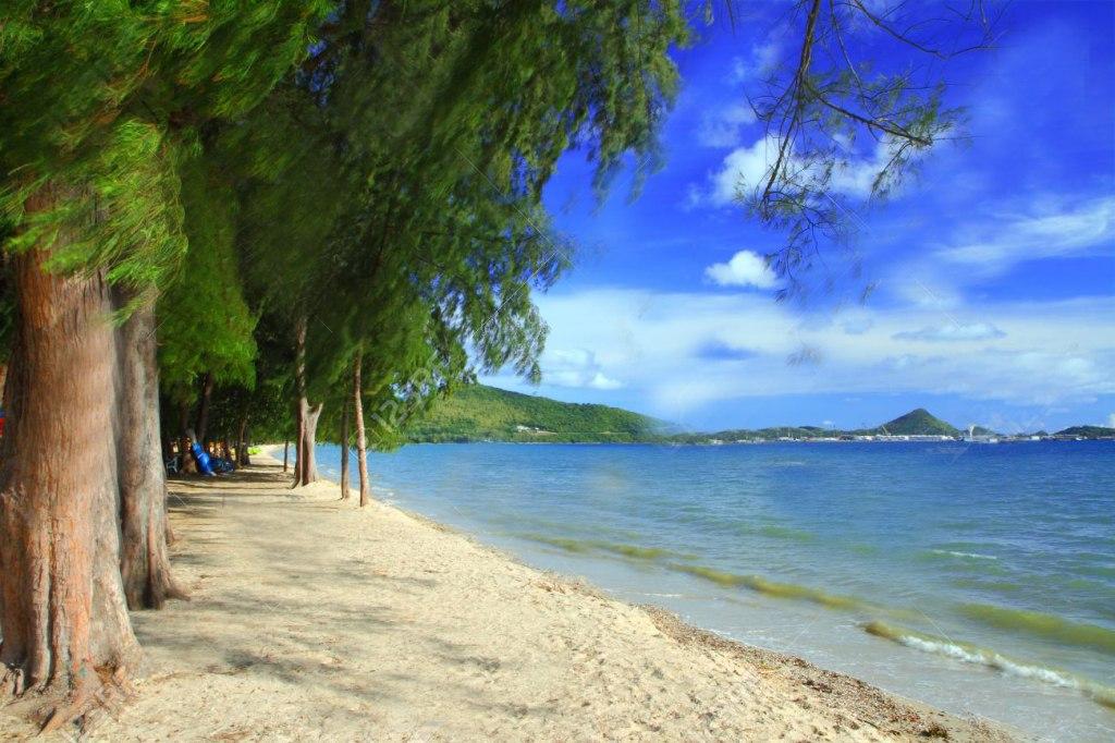 ساحل دانگتان | Dongtan Beach