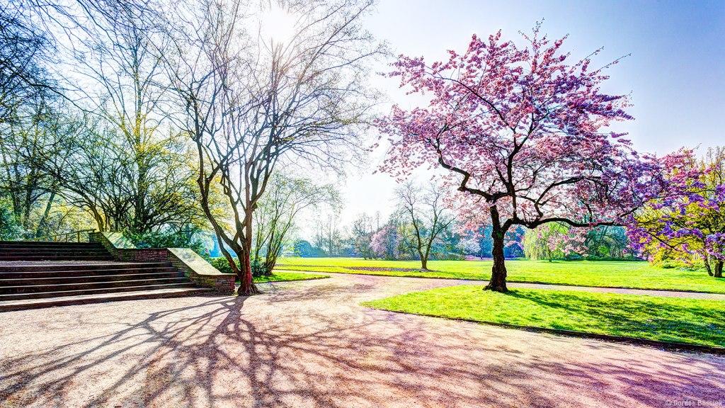 باغ ژاپنی نُرد پارک | Nordpark's Japanese Garden