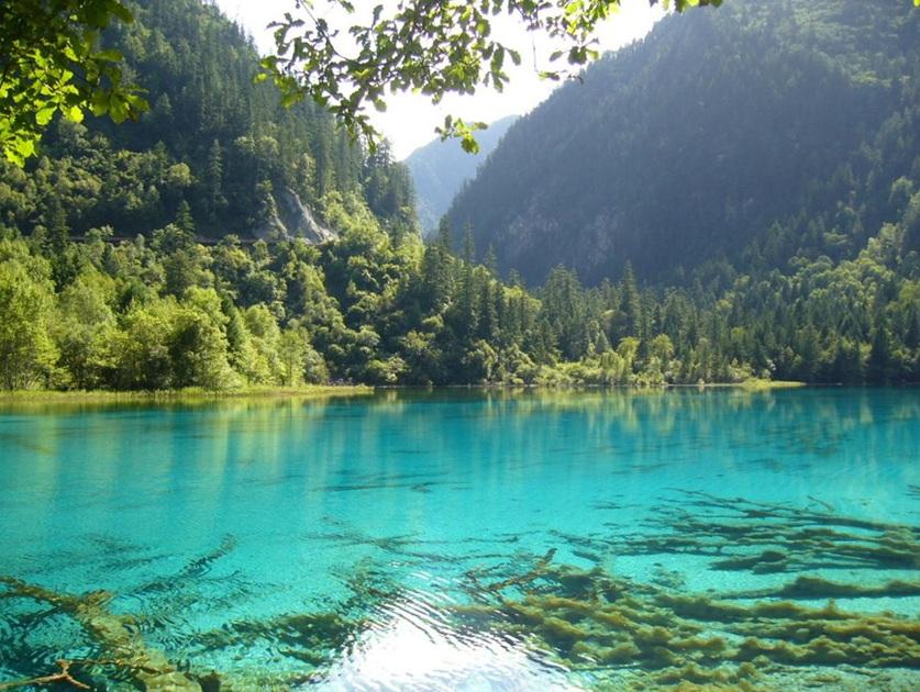 مقدس شمردن آب دریاچه نیوزلند