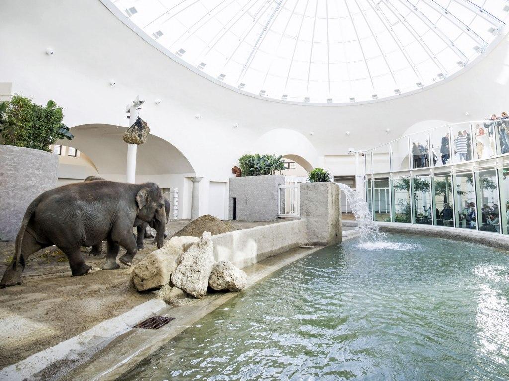 باغ وحش هلابرون مونیخ با طراحی خاص !