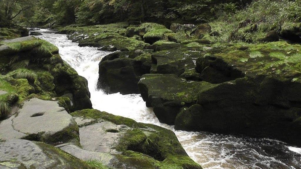 رودخانه وارف بولتون استرید