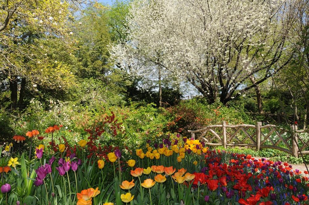 باغ شکسپیر در سنترال پارک نیویورک