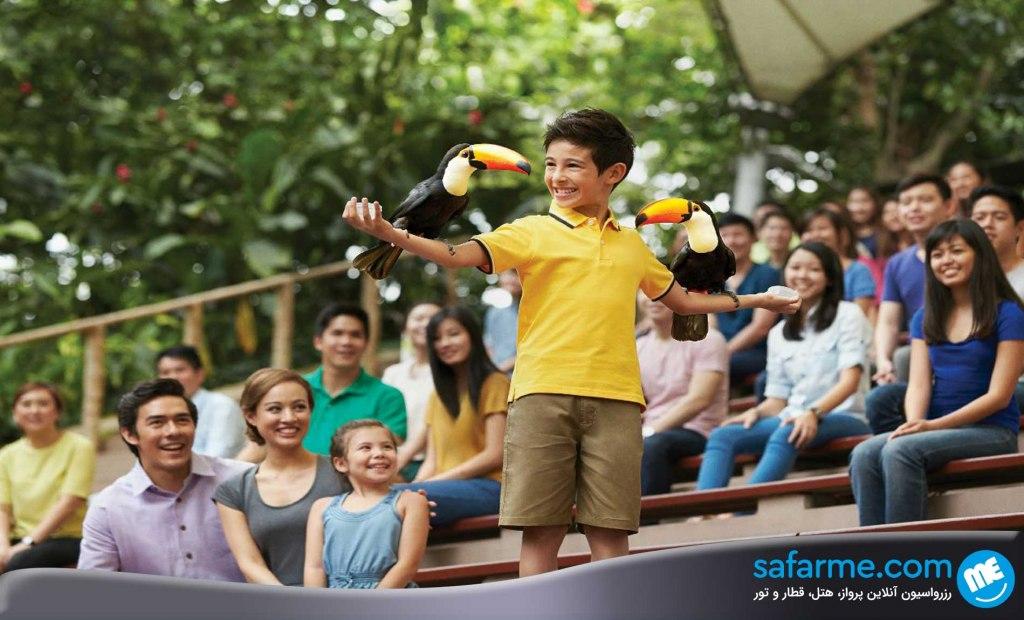 هیجان و ماجراجویی را در قلب سنگاپور تجربه نمایید!
