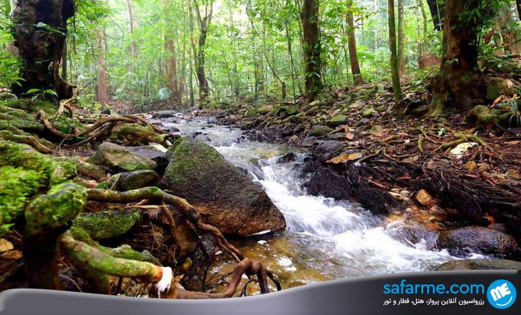 پارک ایالتی پرلیس مالزی