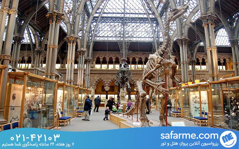 موزه تاریخ طبیعی آکسفورد