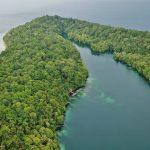 جزیره راجا آمپات ، جزیره عروس دریایی