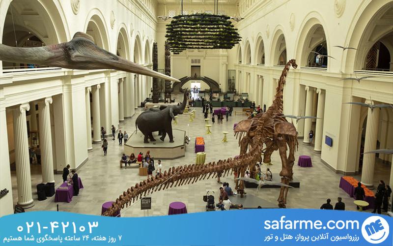 موزه تاریخ طبیعی فیلد