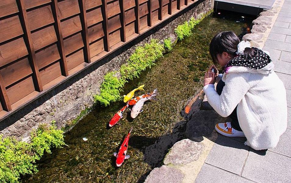 جوی های تمیز ژاپن
